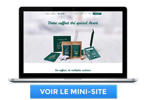 Aperçu du mini-site sur le coffret de l'Avent